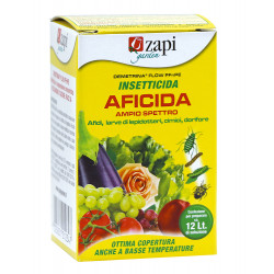 Zapi insetticida aficida 10 ml