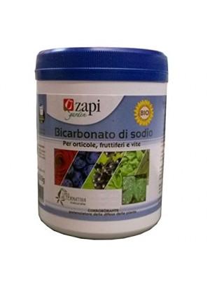Zapi bicarbonato di sodio gr 500