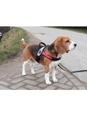 Pettorina per cani di grossa taglia dorsale in carbonio XL nero