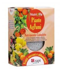 Zapi agrumi granulare 1 kg