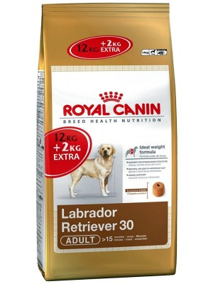 Royal Canin - Labrador Retriever - Promozione 1 Sacco 12 + 2 kg